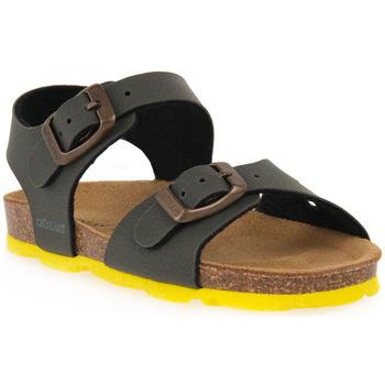 kengät Sandaalit ja avokkaat Grunland OLIVA 40ARIA Verde