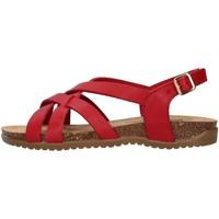 kengät Naiset Sandaalit ja avokkaat Bionatura 34A2168 RED