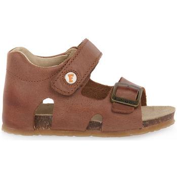 kengät Pojat Sandaalit ja avokkaat Naturino FALCOTTO 0D07 BEA CUOIO Marrone