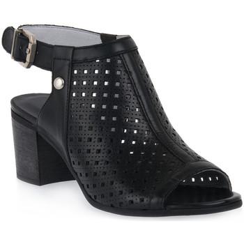 kengät Naiset Sandaalit ja avokkaat NeroGiardini NERO GIARDINI  100 RIO NERO Nero