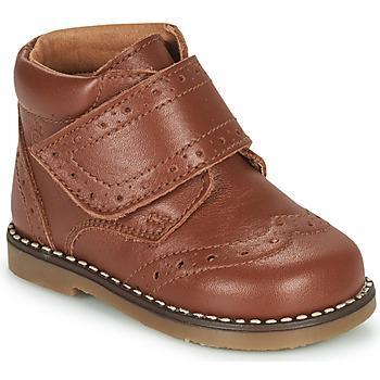 kengät Pojat Bootsit Citrouille et Compagnie PROYAL Kamelinruskea