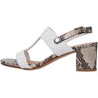 kengät Naiset Sandaalit ja avokkaat Albano 8074 GREY