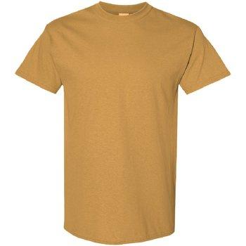 vaatteet Miehet Lyhythihainen t-paita Gildan 5000 Old Gold