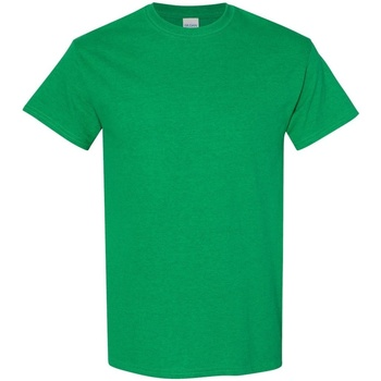 vaatteet Miehet Lyhythihainen t-paita Gildan 5000 Antique Irish Green