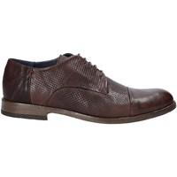 kengät Miehet Derby-kengät Rogers CP 05 Ruskea