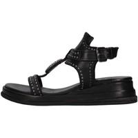 kengät Naiset Sandaalit ja avokkaat Zoe CHEYENNE02 BLACK
