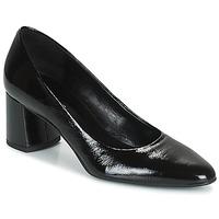 kengät Naiset Korkokengät Betty London PANEA Musta