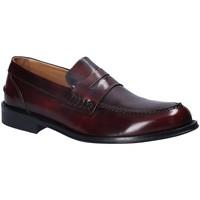 kengät Miehet Mokkasiinit Rogers 102 Punainen