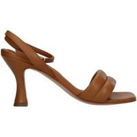 kengät Naiset Sandaalit ja avokkaat Paola Ferri D7439 BROWN
