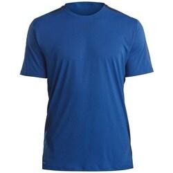 vaatteet Miehet Lyhythihainen t-paita Saucony SAM800179 Tummansininen