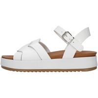 kengät Naiset Sandaalit ja avokkaat Inuovo 769006 WHITE