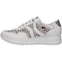 kengät Naiset Matalavartiset tennarit CallagHan 40721 WHITE