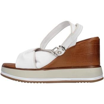 kengät Naiset Sandaalit ja avokkaat Inuovo 766011 WHITE