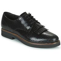 kengät Naiset Derby-kengät Minelli SOLENNA Musta