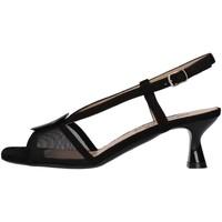 kengät Naiset Sandaalit ja avokkaat Melluso S402 BLACK