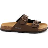 kengät Miehet Sandaalit Grunland CB3012 Ruskea
