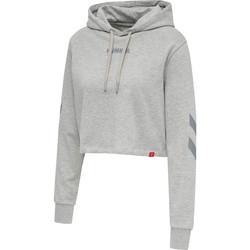 vaatteet Naiset Svetari Hummel Sweatshirt à capuche femme  hmlLEGACY cropped gris