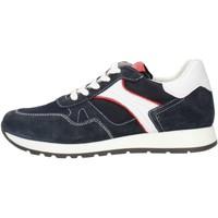 kengät Miehet Mokkasiinit Made In Italia 0380 Ruskea