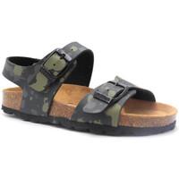kengät Lapset Sandaalit ja avokkaat Pastelle Elroy Vihreä
