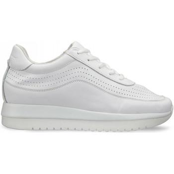 kengät Naiset Matalavartiset tennarit Docksteps DSW951000 Valkoinen