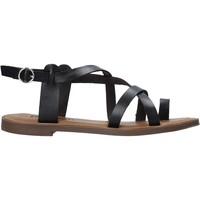 kengät Naiset Sandaalit ja avokkaat Refresh 72655 Musta
