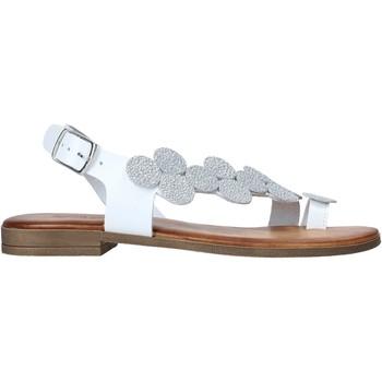 kengät Naiset Sandaalit ja avokkaat IgI&CO 7176311 Valkoinen