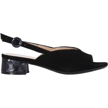 kengät Naiset Sandaalit ja avokkaat Soffice Sogno E2154 Musta
