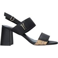 kengät Naiset Sandaalit ja avokkaat Alviero Martini E124 587A Musta