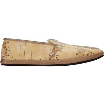 kengät Naiset Tennarit Alviero Martini P203 9430 Ruskea