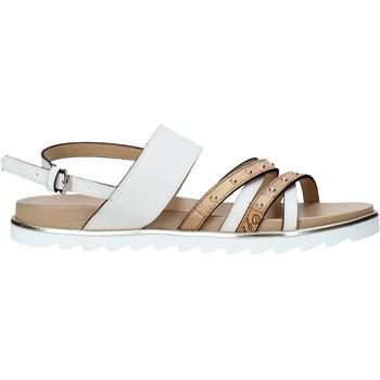 kengät Naiset Sandaalit ja avokkaat Alviero Martini E087 422A Valkoinen