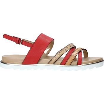 kengät Naiset Sandaalit ja avokkaat Alviero Martini E087 422A Punainen