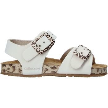 kengät Lapset Sandaalit ja avokkaat Grunland SB1648 Beige