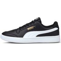 kengät Lapset Matalavartiset tennarit Puma 375688 Musta