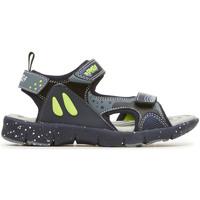 kengät Lapset Urheilusandaalit Primigi 3460100 Sininen