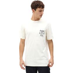 vaatteet Miehet Lyhythihainen t-paita Dickies DK0A4X9NECR1 Valkoinen