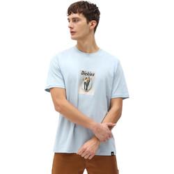 vaatteet Miehet Lyhythihainen t-paita Dickies DK0A4X9IB551 Sininen