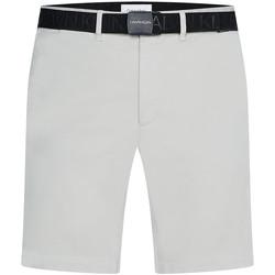 vaatteet Miehet Shortsit / Bermuda-shortsit Calvin Klein Jeans K10K107164 Harmaa