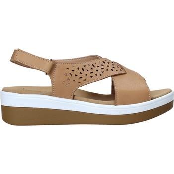 kengät Naiset Sandaalit ja avokkaat Susimoda 2011 Ruskea