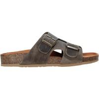 kengät Miehet Sandaalit Bionatura 38A2175-I-CRHFAN Ruskea