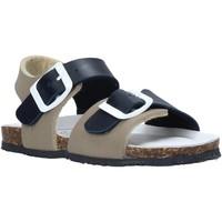 kengät Lapset Sandaalit ja avokkaat Bionatura LUCA Sininen