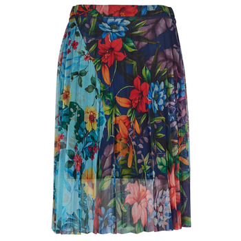 vaatteet Naiset Hame Desigual BUNY Monivärinen