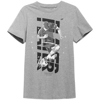 vaatteet Miehet Lyhythihainen t-paita 4F TSM011 Harmaat