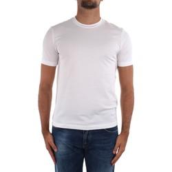 vaatteet Miehet Lyhythihainen t-paita Cruciani CUJOSB G30 White
