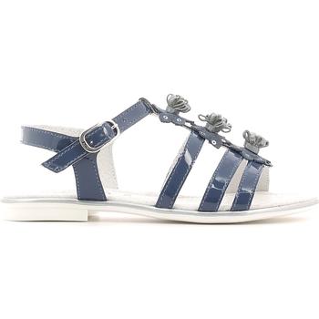 kengät Tytöt Sandaalit ja avokkaat NeroGiardini P631370F Sininen