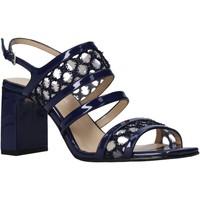 kengät Naiset Sandaalit ja avokkaat Apepazza S0MONDRIAN08/PAT Sininen