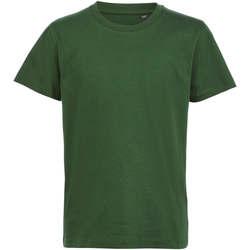 vaatteet Lapset Lyhythihainen t-paita Sols CAMISETA DE MANGA CORTA Verde