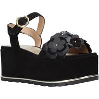 kengät Naiset Sandaalit ja avokkaat Docksteps DSE104973 Musta