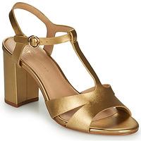 kengät Naiset Sandaalit ja avokkaat Cosmo Paris ZOUM Kulta