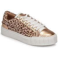 kengät Naiset Matalavartiset tennarit Vanessa Wu LEVANTER Leopardi