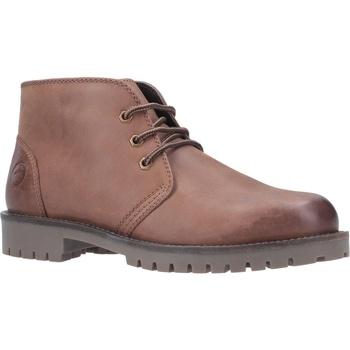 kengät Miehet Bootsit Cotswold  Tan